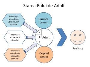 starea de adult